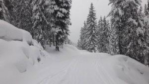 besneeuwde weg