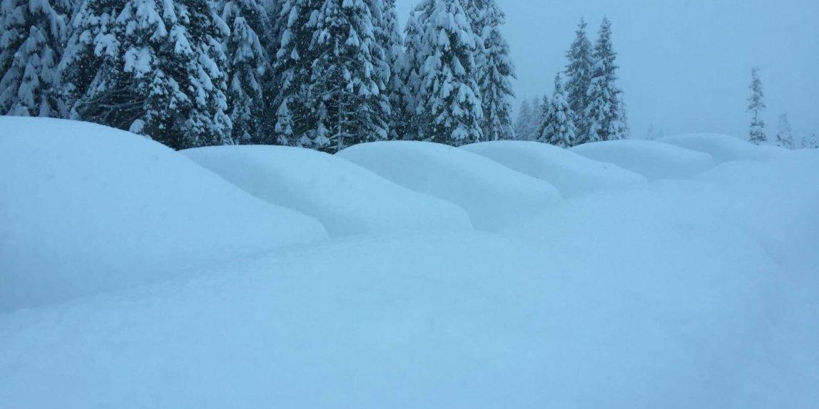 Auto's ondergesneeuwd